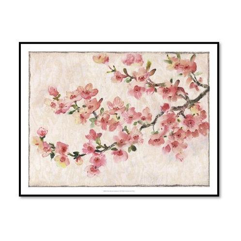 Cherry Blossom II - Framed & Mounted
