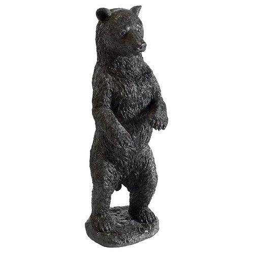 Horizon Standing Bear