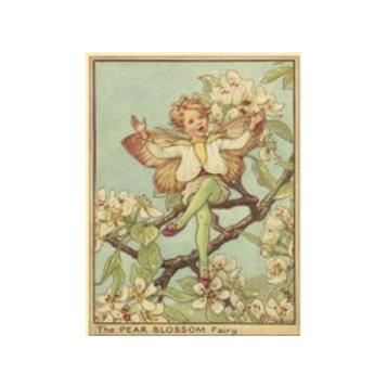 The Pear Blossom Fairy - Canvas Art