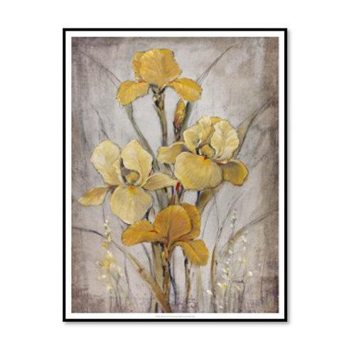 Golden Irises I - Framed & Mounted