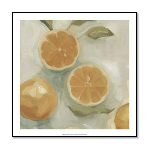 Citrus Study in Oil I - Framed & Mounted Art