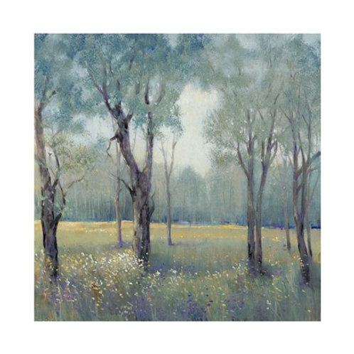 Morning Mist - Canvas Art