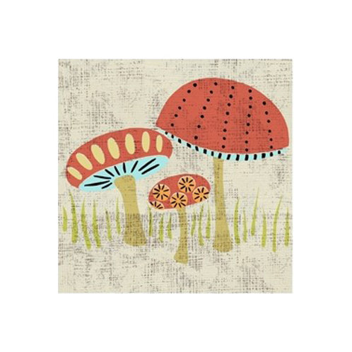 Ada's Mushrooms- Canvas Art