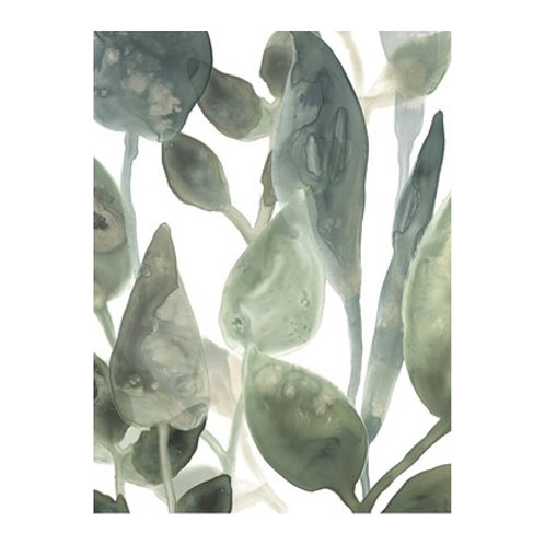 Water Leaves IV- Canvas Art