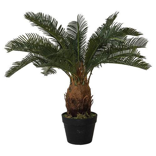 Cycad Fake Plant