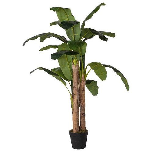 Fake Banana Palm Tree