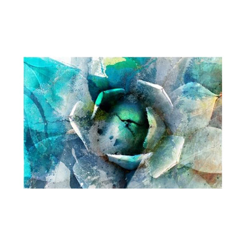 Agave Abstract I - Canvas Art