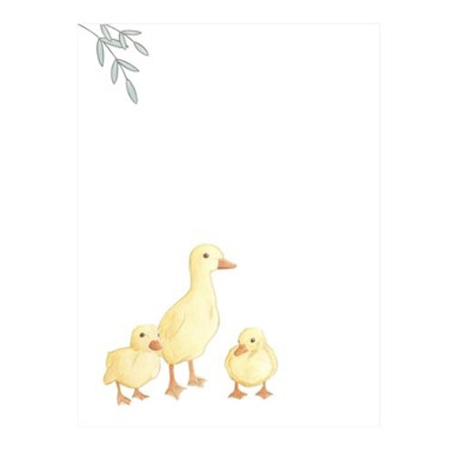 Baby Animals III - Canvas Art