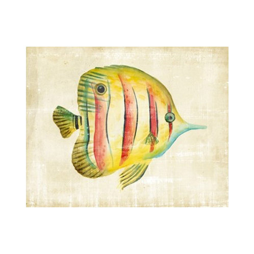 Aquarium Fish III - Canvas Art