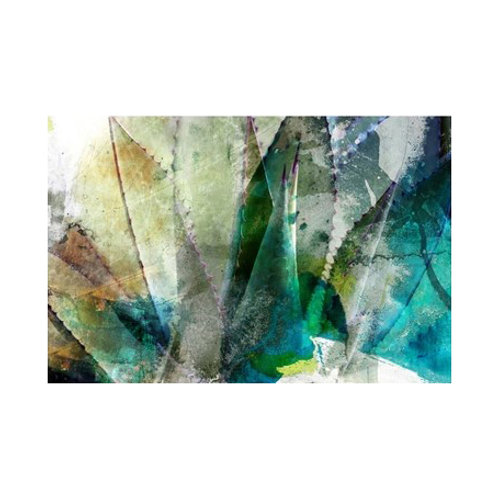 Agave Abstract II - Canvas Art