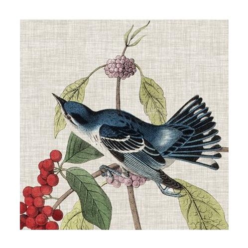 Avian Crop III - Canvas Art