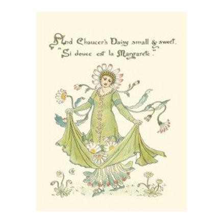 Shakespeare's Garden X (Daisy) - Canvas Art