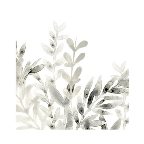 Watermark Foliage I- Canvas Art