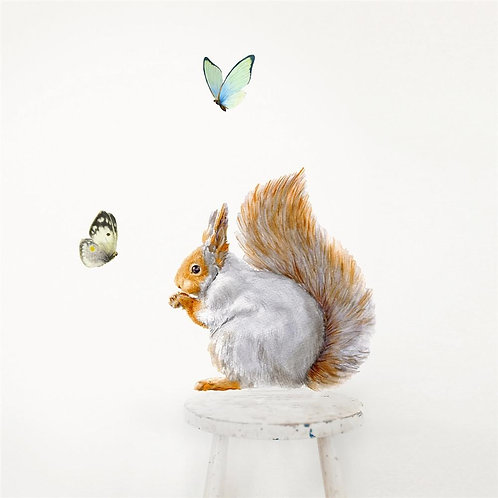 Grey Squirrel - Kids Wall Stickers