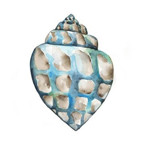 Aquarelle Shells V - Canvas Art