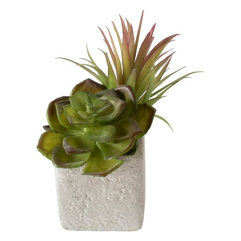 Faux Potted Succulents - Pack of 6