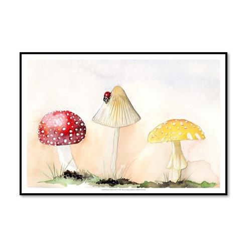 Faerie Mushrooms I - Framed & Mounted Art