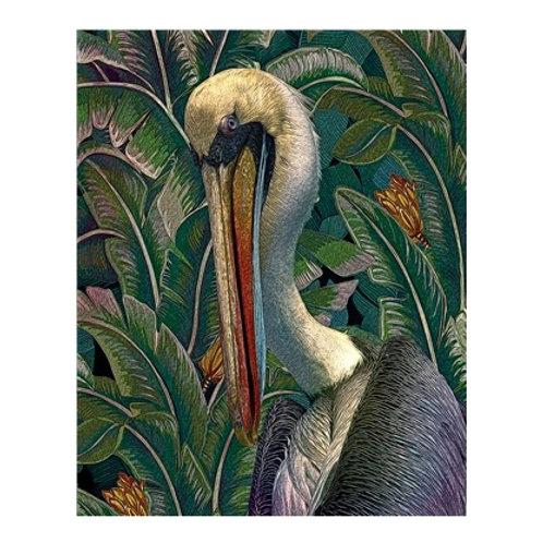 Primal Pelicana - Canvas Art