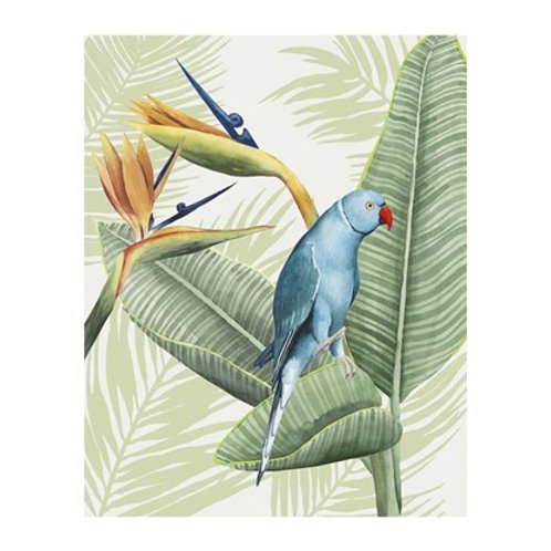 Avian Paradise III - Canvas Art