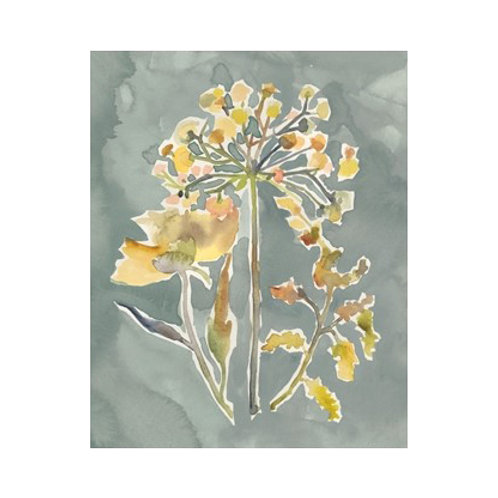 Collected Florals II - Canvas Art