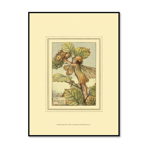The Hazelnut Fairy - Framed & Mounted Art