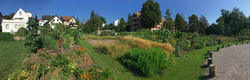 2020-07-28 Ogif Garten, 5