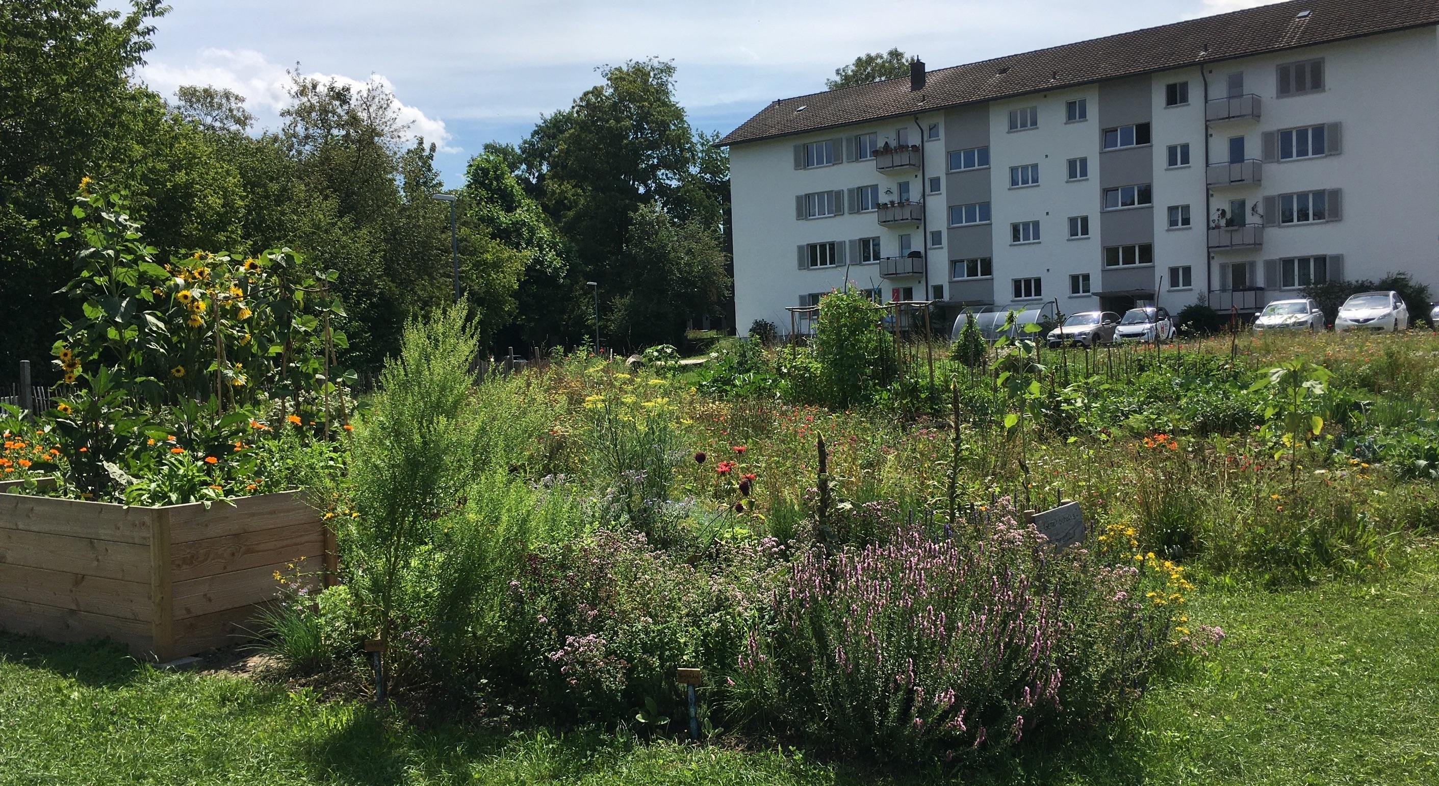 2020-07-19 Ogif Garten, 09