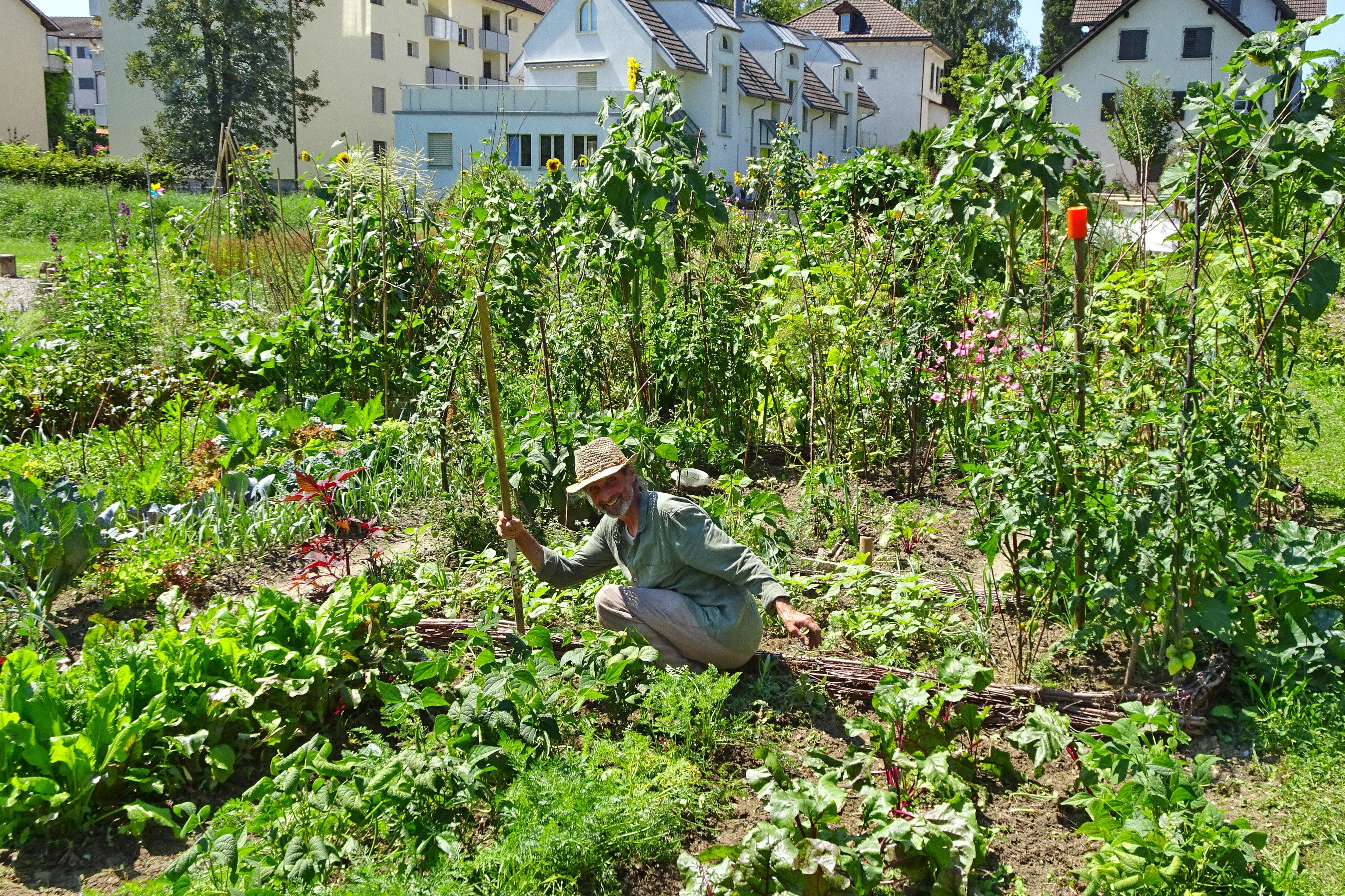 2020-08-07 Ogif Garten 09, Walter