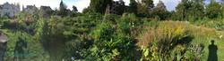 2020-08-13 Ogif Garten 2