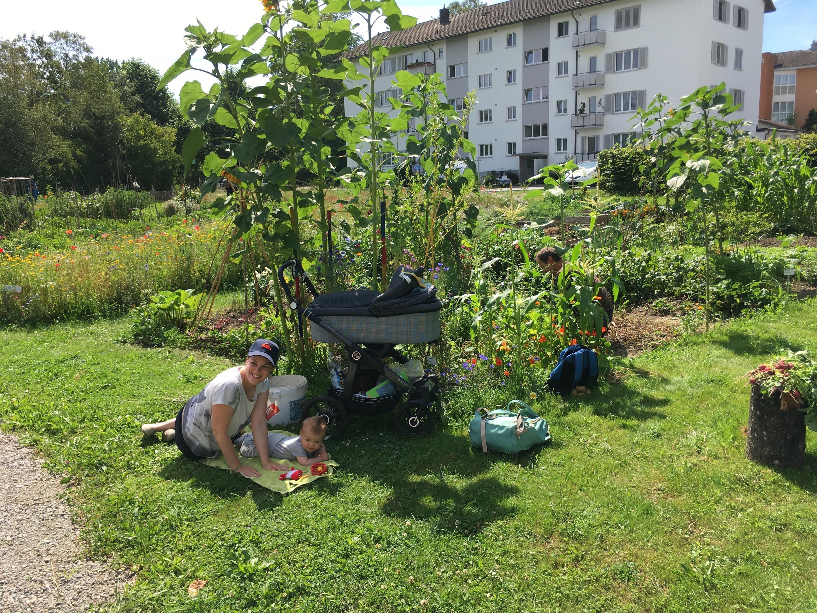 2020-07-19 Ogif Garten, 05