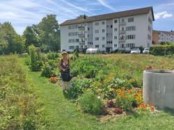2020-07-19 Ogif Garten, 03