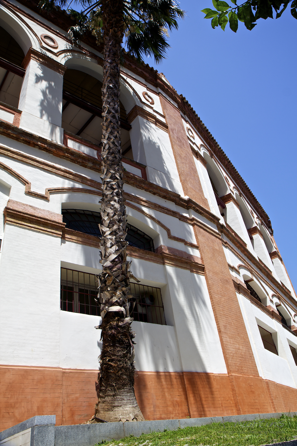 malaga (9).jpg