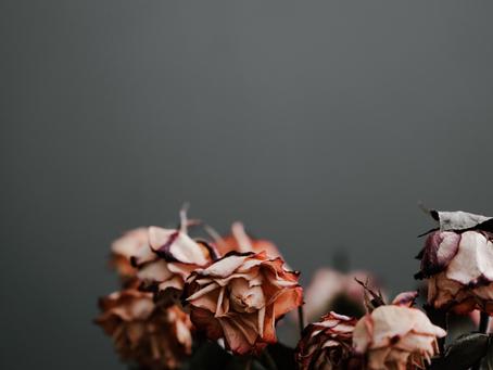 Spiritual Heart Assessment Post Two: Neglect