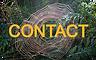 Spider%20photo%20website_edited.png