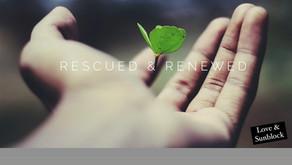 Rescued & Renewed.