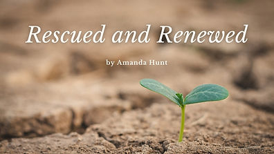 Rescued-and-Renewed-cover-photo.jpg