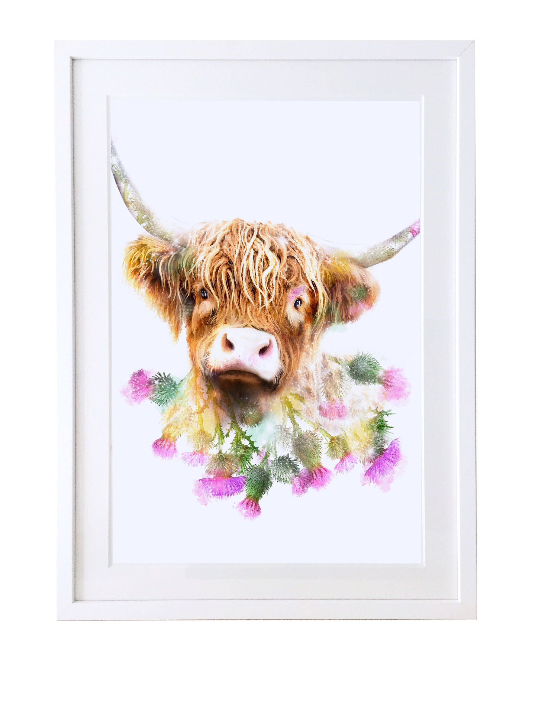 lola design ltd greeting cards art gifts highland cow fine