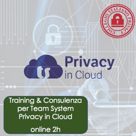 Training & Consulenza su Team System Privacy in Cloud online di 2h
