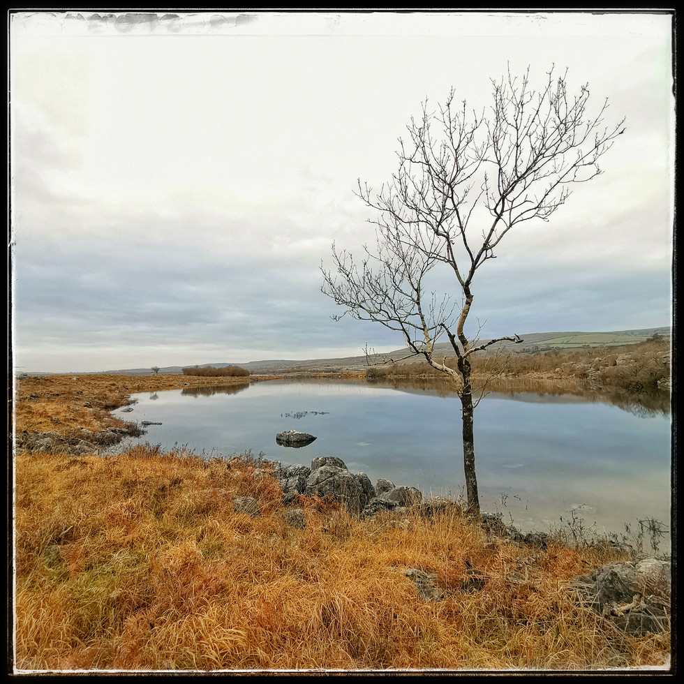 The Burren Co. Clare