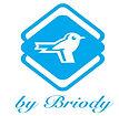 briody logo.jpg