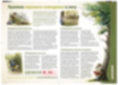 поведение в лесу -1.jpg