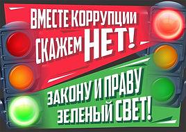 2.Жолнин Роман 17 лет г.Нижний Новгород.