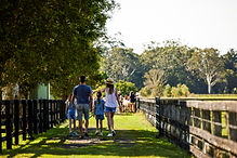 Wandering down to the alpacas. Photo by Destination NSW..jpg