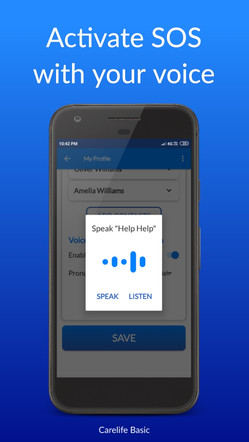 voice command activation.jpg