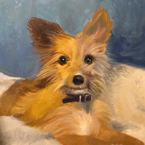 Julissa's Pupper