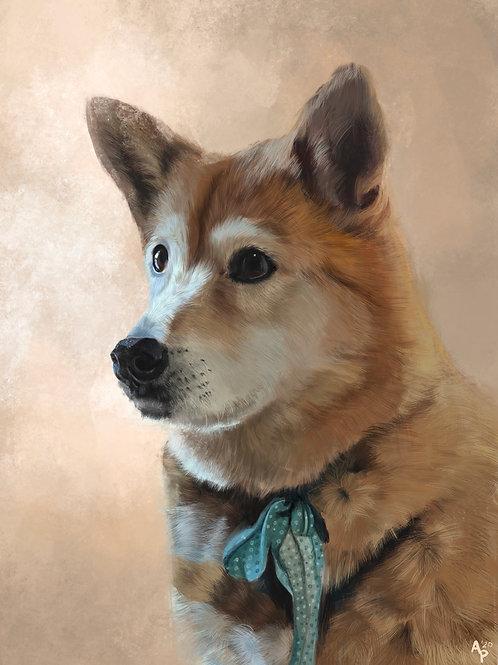 Brook's Pupper