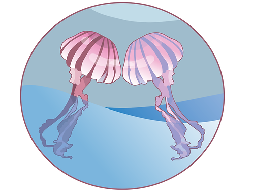 Twin Jelly Sticker