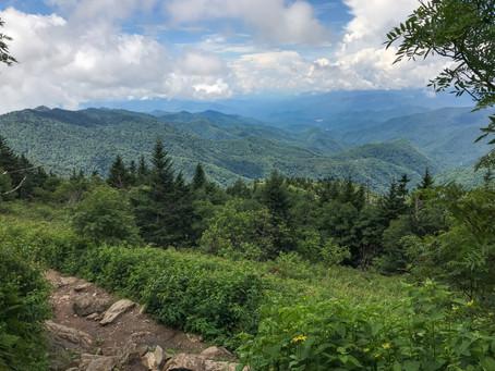 Wild Waterrock Knob Trail