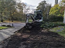 Anläggning trädgård.jpg