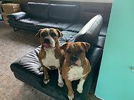 Chloe and Cali